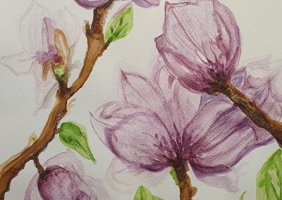 Port Wine Magnolias